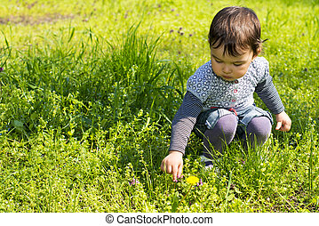 Cute little girl picking flowers on the meadow