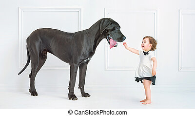Cute little girl playing with a huge dog