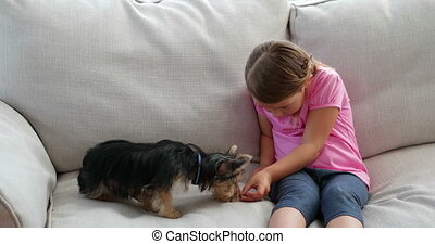 Cute little girl playing with dog