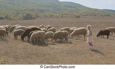Cute little girl trying to feed the sheep in a meadow