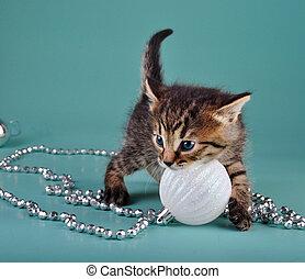 cute little kitten with white Christmas ball - Cute little...