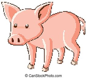 Cute little pig on white background