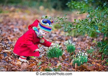Cute little toddler girl smelling beautiful snowdrop flowers in