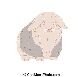 Cute lop angora rabbit. Happy fuzzy ram bunny standing. Domestic animal with fluffy fur on eyes. English coney pet. Flap-eared breed of rodent. Flat vector illustration isolated on white background.