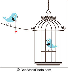 Cute birds in birdcage
