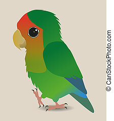 Cute lovebird - A very cute peach faced lovebird parrot