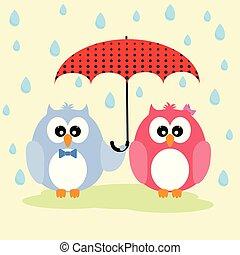 Cute lovely owls couple under umbrella