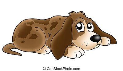 Cute lying dog - color illustration.