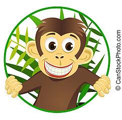 cute, macaco