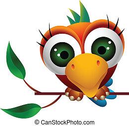 cute, macaw, pássaro, caricatura