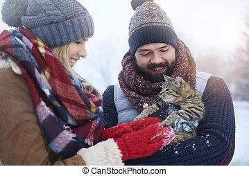 cute, macio, animal estimação, segurado, por, par jovem