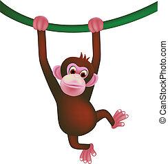 cute monkey  - vector illustration of cute monkey