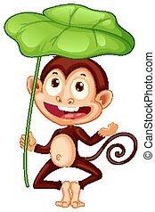 Cute monkey holding big leaf on white background