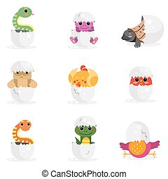 Cute newborn animal characters set, funny reptiles and birds in egg shell cartoon vector Illustration
