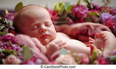 Cute newborn baby girl sleeping in flowers