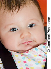 Cute newborn infant