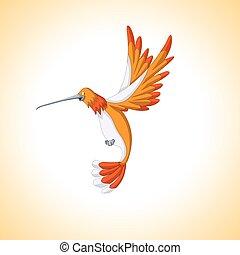 cartoon hummingbird fly
