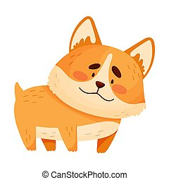 Cute orange corgi. Vector illustration on a white background.