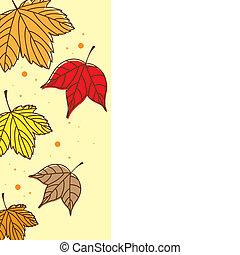 cute, outono sai