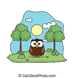 cute owl bird in the landscape