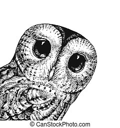 Cute Owl Illustration. Vector Illustration of the Baby Owl Black on a White. Can Be Used for t-shirt Print, Kids Wear Fashion Design, Baby Shower Invitation, Nursery Card