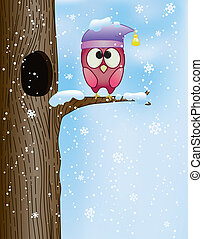 cute owl on a branch in winter