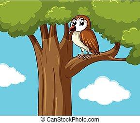 Cute owl on the tree