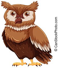 Cute owl with brown feather