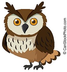 Cute owl with brown feather on white background