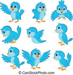 cute, pássaro azul, caricatura
