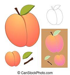 cute, pêssego, isolado, ilustração, experiência., vetorial, branca