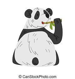 Cute Panda Bear Eating Stem of Bamboo, Funny Wild Animal Cartoon Style Vector Illustration on White Background