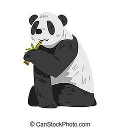 Cute Panda Bear Sitting and Munching on Bamboo, Funny Wild Animal Cartoon Style Vector Illustration on White Background
