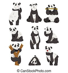 Cute Panda Bears Set, Funny Wild Animals in Various Poses Cartoon Vector Illustration Isolated on White Background