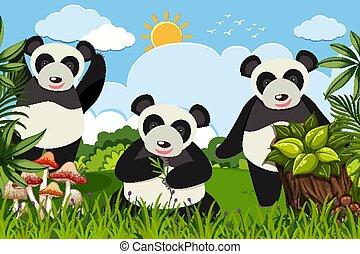 Cute panda in nature scene