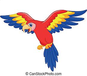 cute, papagaio, pássaro, caricatura