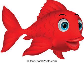 cute, peixe, caricatura, vermelho