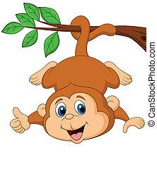 cute, penduradas, árvore, macaco, branc
