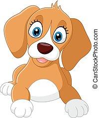cute, pequeno, cão, caricatura