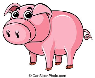 Cute pig on white background