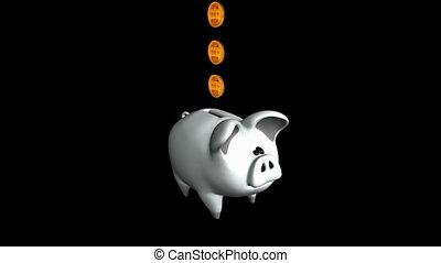 Cute Piggy Bank. Alpha matte. Loop