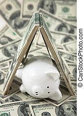 Cute Piggy Bank under shelter of cash - Close up of a cute...