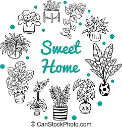 Cute plants in a circle shape with text. Doodle black and white flowers, cactus, and succulents in pots. Vector illustration. Natural design elements can be used for postcards, banners, websites or ads.