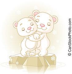 Cute Polar Bears - Couple of cute Polar Bears Hugging on the...