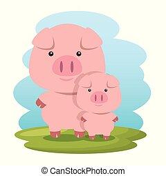 cute, porcos, pai, caráteres, filho