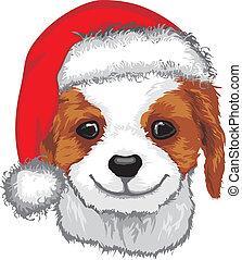 Cute Puppy In Santa Hat