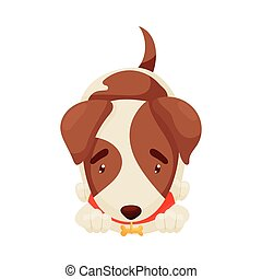 Cute puppy lies. Vector illustration on white background.