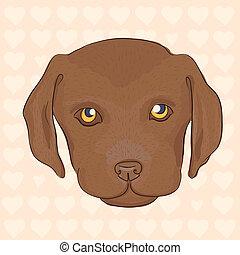 Cute puppy of a brown labrador