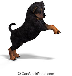 cute puppy rottweiler - very cute young dog over white with ...