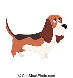 Cute purebred basset hound dog character, cartoon vector illustration